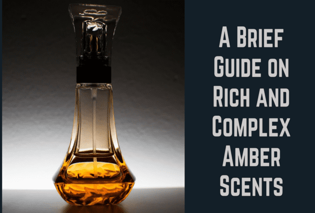 Amber Scents